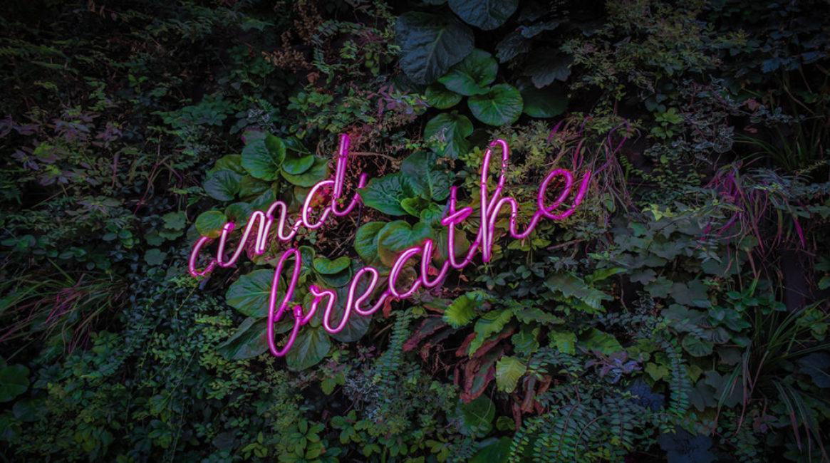 1165x650.jpg breathe